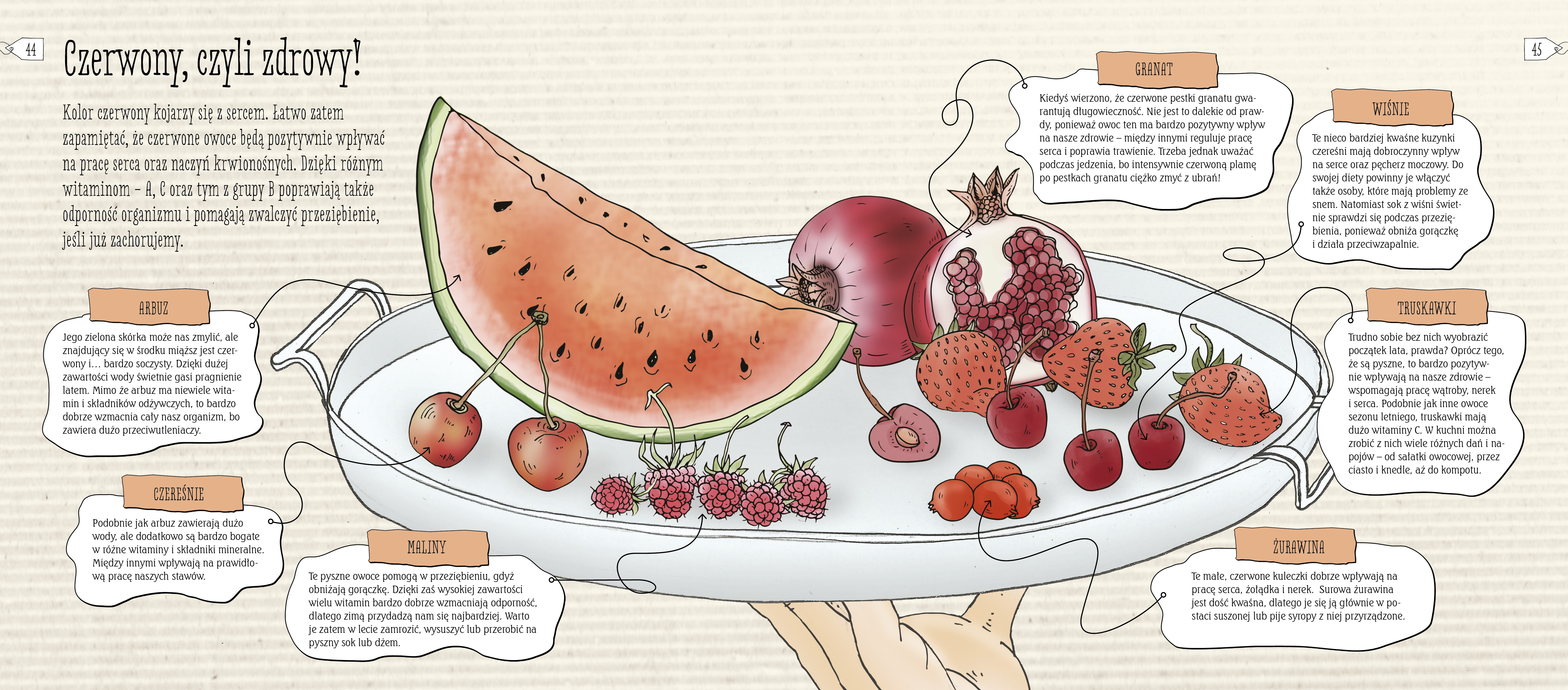 Bulka I Spolka Rzecz O Zdrowym Jedzeniu